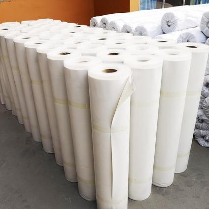河北非瀝青基自粘膠膜HDPE防水卷材 2.0mm 無砂 企標防水材料